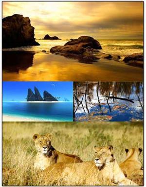 تصاویر فوق العاده زیبا و با کیفیت از طبیعت Full HD Nature Wallpapers