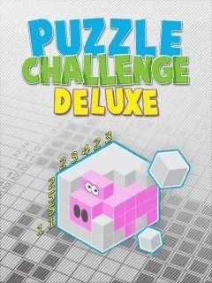 دانلود بازی جدید و سرگرم کننده Puzzle Challenge Deluxe